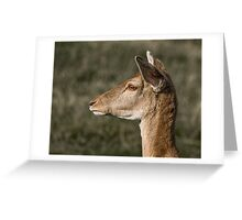 Fallow Deer Profile Greeting Card