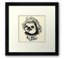 Sloth Einstein Framed Print