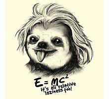 Sloth Einstein Photographic Print