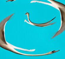Three Flying Swans  Sticker