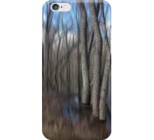 Ash in a Flooded Plain iPhone Case/Skin