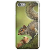 Tails Up! iPhone Case/Skin