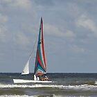 Galveston _ Memorial Day at the beach by Baba John Goodwin