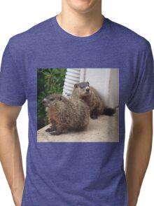 Act casual, pretend you don't see it. Tri-blend T-Shirt
