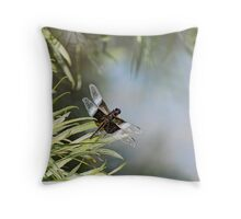 Black and Blue Widow Skimmer Throw Pillow