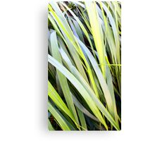 Reeds of Leaves Canvas Print