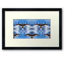 Bird Sky Framed Print