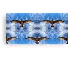 Bird Sky Canvas Print