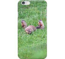 Bookends iPhone Case/Skin