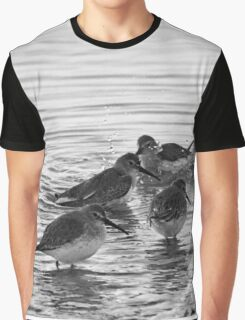 Calidris Alpina - Dunlin's Winter Bathing | Springs, New York Graphic T-Shirt