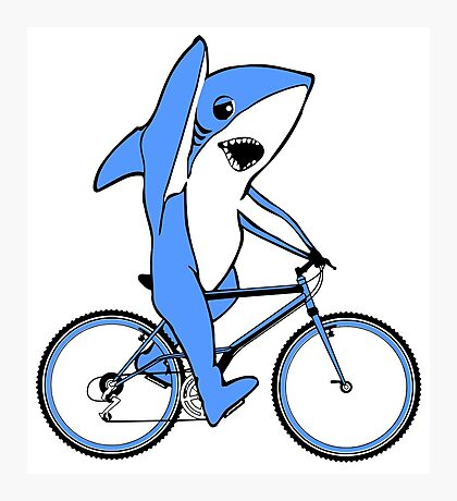 Bicycle Riding Left Shark  Photographic Print
