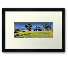 Country Australia Framed Print