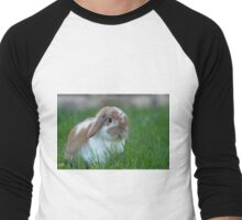 Brown and White Holland Lop Rabbit Munching on Grass Men's Baseball ¾ T-Shirt