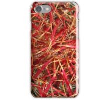 Barrel Cactus iPhone Case/Skin