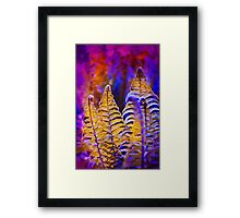 Photo of yellow fern growing in purple forest Framed Print