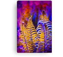 Photo of yellow fern growing in purple forest Canvas Print