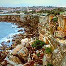 Rocky path to Coogee by Michael Matthews