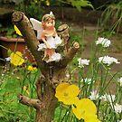 Fairy Garden by AnnDixon