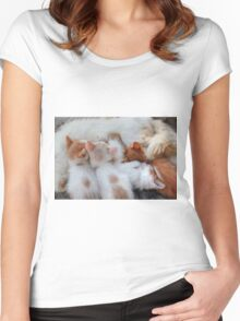 Little Balls of Fur! Women's Fitted Scoop T-Shirt
