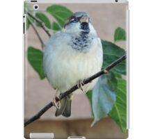 Darling of Flight iPad Case/Skin