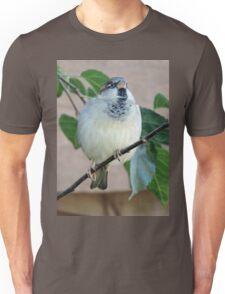 Darling of Flight Unisex T-Shirt