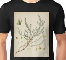 The botany of the Antarctic voyage of H M  discovery ships Erebus and Terror in the Years 1839 1843 Joseph Dalton Hooker V1 023 Unisex T-Shirt