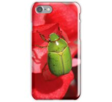 Green Beetle Clinging to a Red Flower iPhone Case/Skin