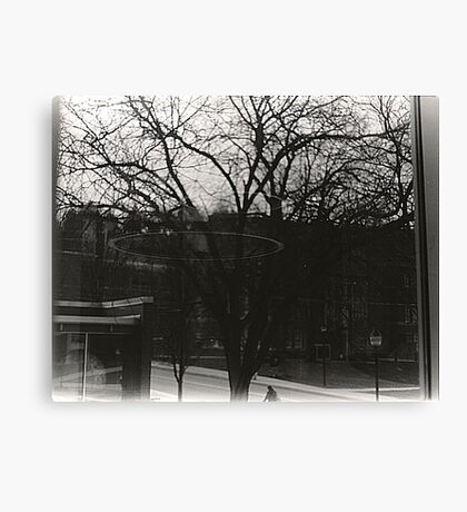 Of Trees and Rings Canvas Print
