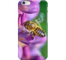 Bee descending on a lupin iPhone Case/Skin