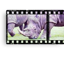 Sketch of Rhino on Film Canvas Print