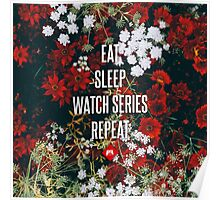 Eat Sleep Watch Series Repeat Poster