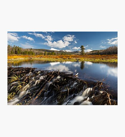 Beaver dam in the Uinta's Photographic Print