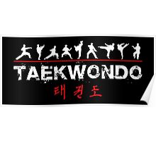 Taekwondo Text and Fighters White Poster