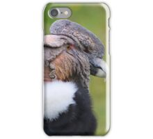 Adult Male Andean Condor iPhone Case/Skin