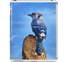 Heavenly Jay iPad Case/Skin