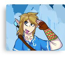 Wii U Link Canvas Print