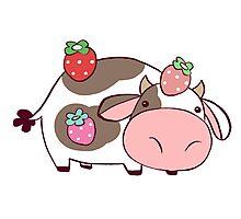 Strawberry Cow Photographic Print
