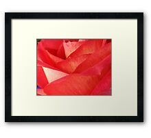 Rose Pedals Framed Print