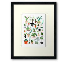 Cacti, Cactus, Succulent, Plant Pattern Print Framed Print