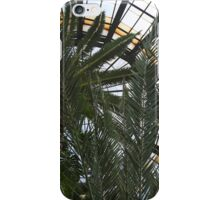 Bell Isle Conservatory Dome 1 iPhone Case/Skin