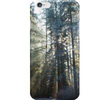 Heaven's Light iPhone Case/Skin