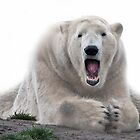 Singing bear by Thea 65
