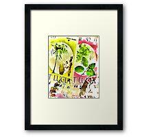 St Lucia Framed Print