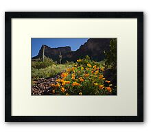The Joy Of The Season Framed Print