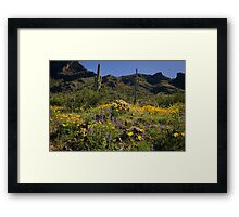 Fields Of Glory Framed Print