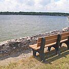 Lake View by Jack Ryan