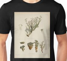 The botany of the Antarctic voyage of H M  discovery ships Erebus and Terror in the Years 1839 1843 Joseph Dalton Hooker V1 067 Unisex T-Shirt