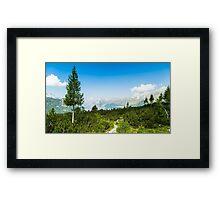 sunny day in the italian alps Framed Print