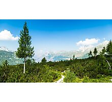 sunny day in the italian alps Photographic Print