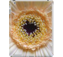 Gerbera Beauty iPad Case/Skin